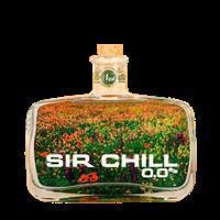 Image de Sir Chill 0,0°  0.5L