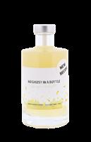 Image de No Ghost in a Bottle Ginger Delight  0.35L