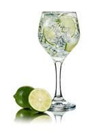 Afbeeldingen van Filliers Dry Gin 28 46° 2L