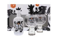 Afbeeldingen van Gin de Binche + 2 Glazen 40° 0.7L