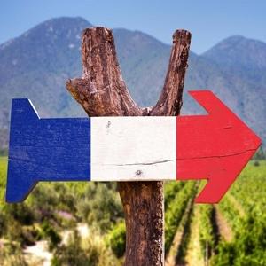 Image de la catégorie VIN DE FRANCE