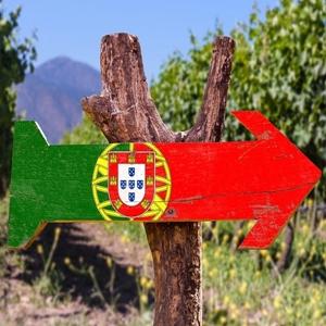 Image de la catégorie VIN DU PORTUGAL